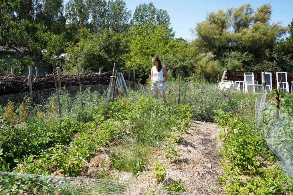 Hier entsteht der permakulturelle Lern- und Gemeinschaftsgarten. Foto: Valentina Troendle